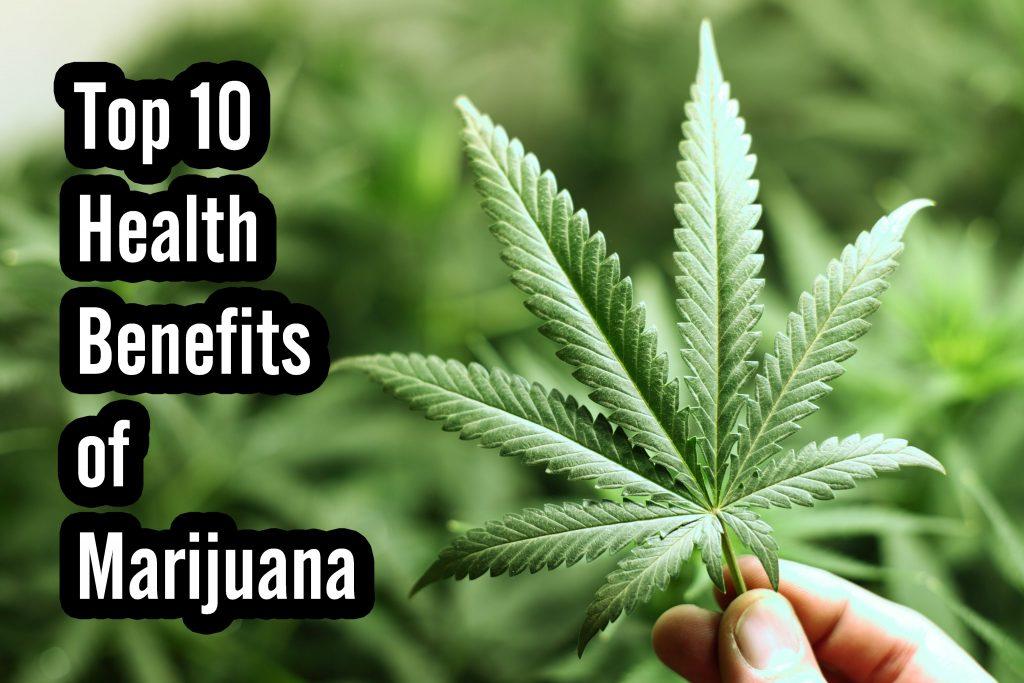 Cannabis Edibles The Basics